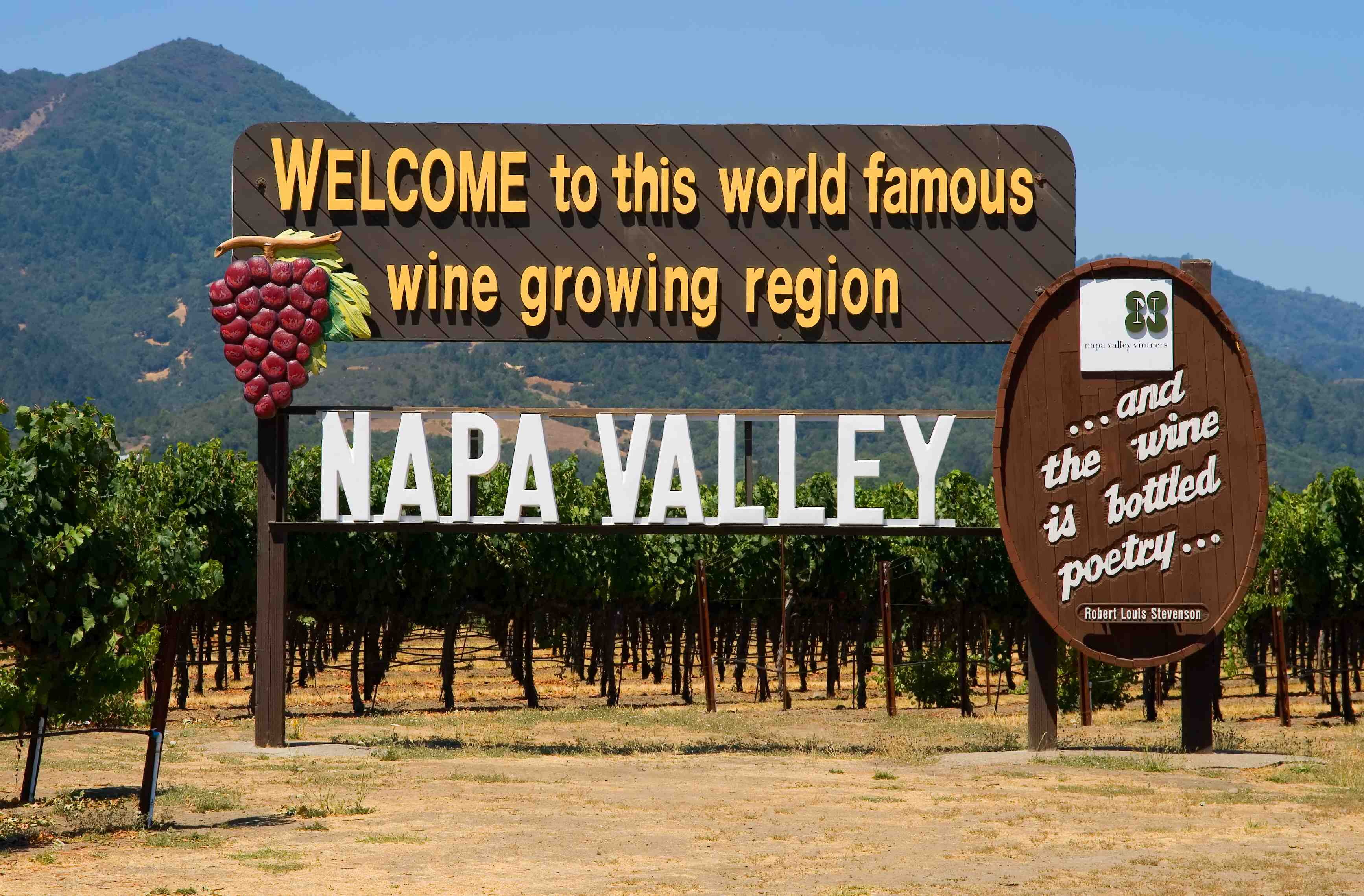 An Interview With Tour Guide Rick Spear California Wine