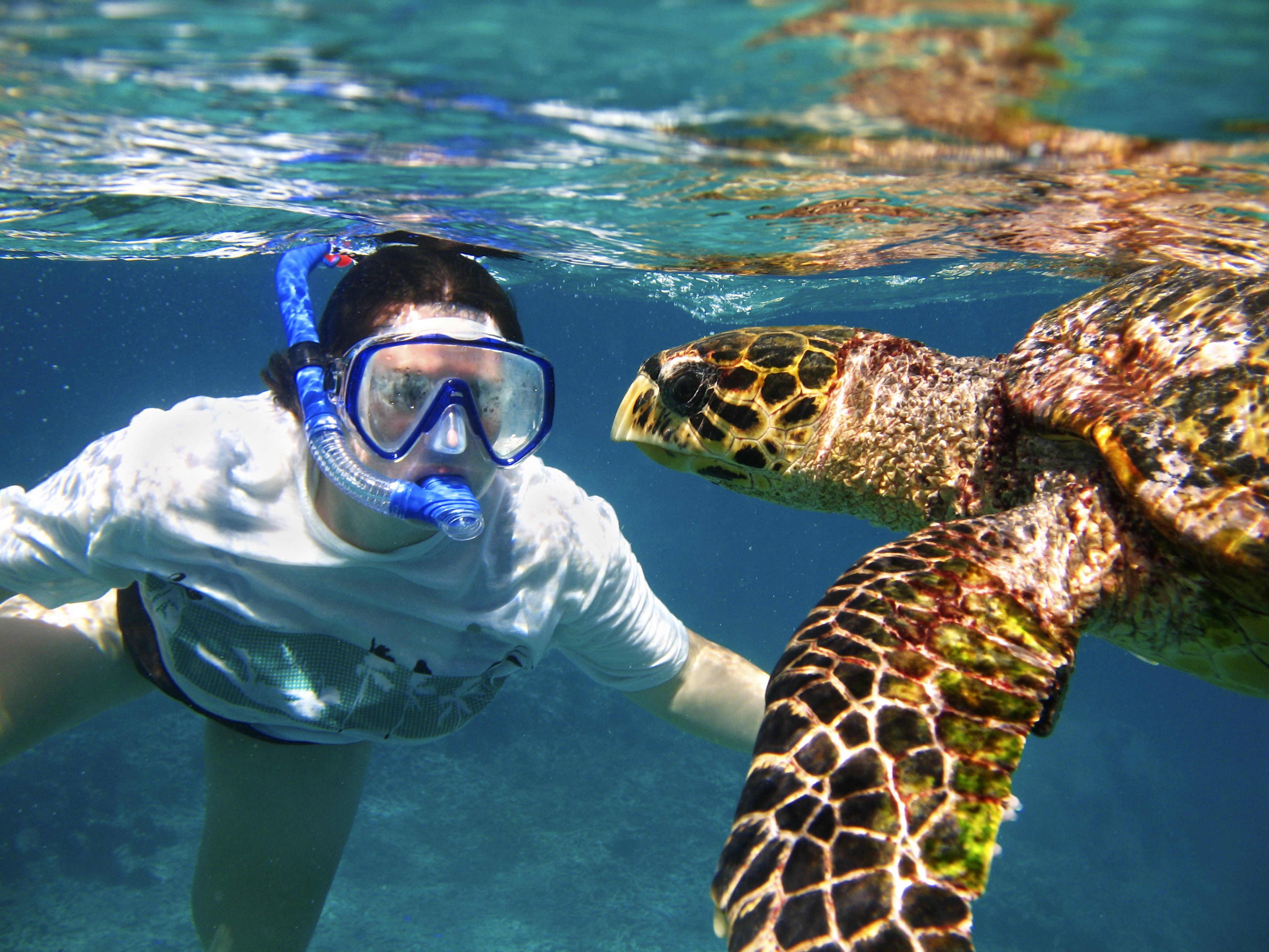 scuba diving in hawaii #2