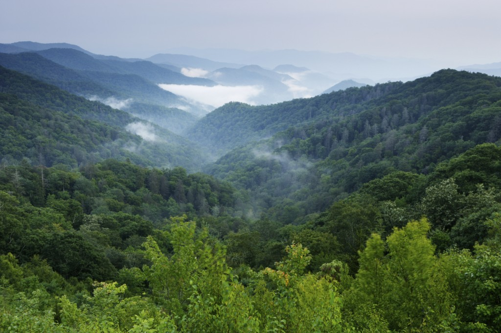 Smoky Mountains iStock medium
