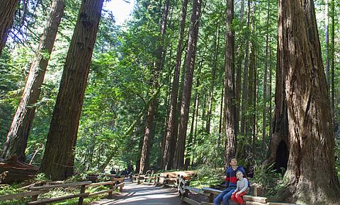 Tours & Packages FromSan Francisco/Berkeley   California Tours